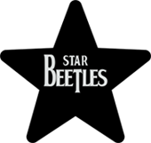 logo-star3